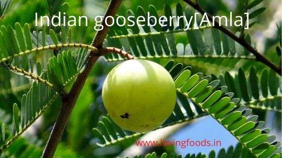 Amla indian goosberry