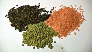 Which dal is high in Protein